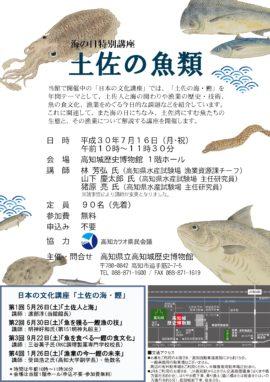 海の日特別講座 土佐の魚類